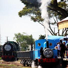 Thomas and Henry by Peter Keast - Transportation Trains ( engine, steam train, train, tourism, transportation, steam )
