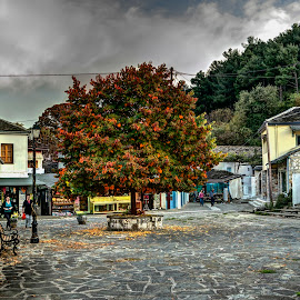 Ioannina by Stratos Lales - City,  Street & Park  Neighborhoods ( tree, autumn, neighborhood, square, people )
