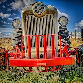Ford 800 Tractor by Ron Meyers - Transportation Other