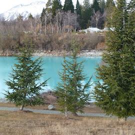 Lake Tekapo New Zealand by Di Mc - Novices Only Landscapes ( colour, mountains, snow, lake, new zealand )