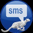 SpeedText  Pro icon