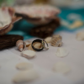 by Sara Hartley - Wedding Details ( ring, shells, jewellery, wedding, rings, object, artistic, jewelry )