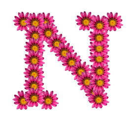 Alphabet - N by Dipali S - Typography Single Letters ( template, graphic, flora, decoration, letter, font, art, advertisement, type, sign, nature, quote, background, artistic, pink, flowers, design, floral )