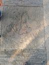 石雕-孔雀