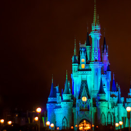 Cinderella's Castle by Tom Adam - City,  Street & Park  Amusement Parks ( cinderell'a castle, magic kingdom, night, disney )
