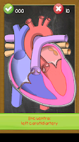 Screenshot of Learn human anatomy for kids