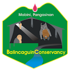 BalincaguinConservancy