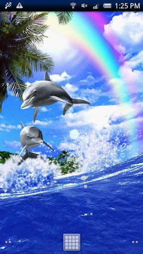 Dolphin☆Champion