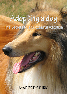 Adopting a Dog - screenshot