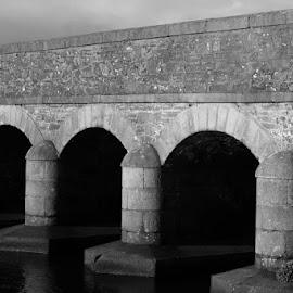 12 Arches by Christina Marr - Buildings & Architecture Bridges & Suspended Structures ( black and white, bridge )