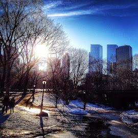 by Winnie Basso - City,  Street & Park  City Parks