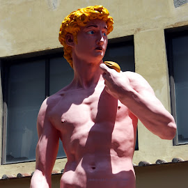 Pink David by Alicen Collins - Buildings & Architecture Statues & Monuments ( contrasting color, statue, italian, david, uffici museum,  )