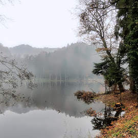 fog on the lake by Dunja Kolar - Landscapes Weather ( fog on the lake )