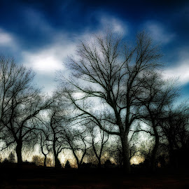 IMG_0875 by Michael Sinko - Landscapes Prairies, Meadows & Fields ( clouds, sky, nature, outdoors, trees, landscape photography, long exposure, landscapes, landscape )