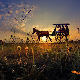 dokar by Indra Prihantoro - Transportation Other ( sunset, transportation )