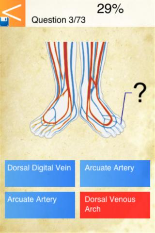 免費下載教育APP|Anatomy - Circulatory System app開箱文|APP開箱王