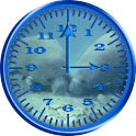 Manatee 1 Analog Clock icon