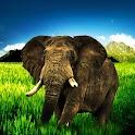 3D elephant 1