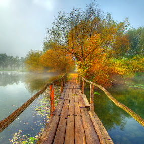 by Boris Frković - Landscapes Waterscapes
