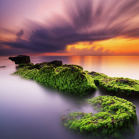The Natural Duality by Eggy Sayoga - Landscapes Sunsets & Sunrises ( water, indonesia, moss, rock, beach, sunrise )