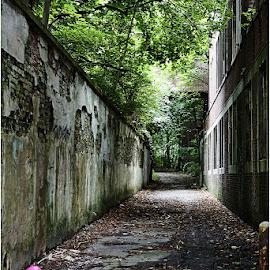 What lies Ahead by Raquel Gonzalez - Buildings & Architecture Other Exteriors ( pennhurst )