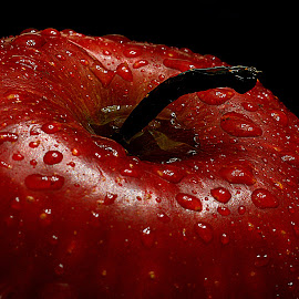 Red apple. by Andrew Piekut - Food & Drink Fruits & Vegetables