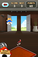 Screenshot of Crazy Cats