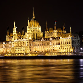 Parliament Building by John Zocco - Buildings & Architecture Public & Historical ( parliament, budapest, europe, night, danube, river,  )