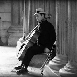 Cello by Michael Lunn - People Musicians & Entertainers (  )