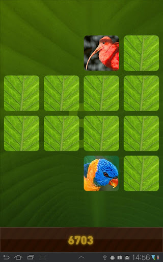 Jungle Memory Game