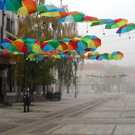 Umbrellas by Gabriela Ivanova - City,  Street & Park  Street Scenes ( umbrellas, fog, street, bulgaria, street photography )