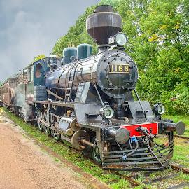 Train to Porvoo Finland by Lee Davenport - Transportation Trains