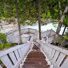 Glacier National Park by Greg Koehlmoos - Landscapes Travel ( stairs down, stairs to the river, steep stairs, slippery stairs, downstairs, glacier national park )
