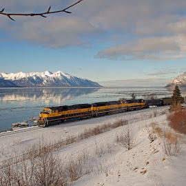 Southbound Along the Arm by Frank Keller - Transportation Trains ( kenai, reflection, mountains, railroads, turnagain arm, alaska, trains )