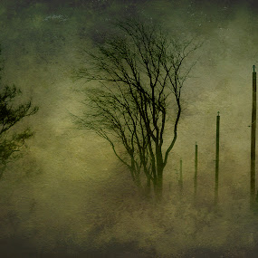 Stormy Day in Mirabel by Rachel Bilodeau - Digital Art Places