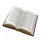 หนังสือพงษาวดารเหนือ icon