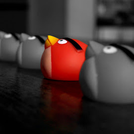 Ready to go... by Kusal Ranasinghe - Artistic Objects Toys