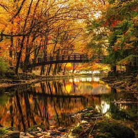 Autumn Reflection by Aaron Choi - Landscapes Mountains & Hills ( reflection, national park, mountain, nature, autumn, foliage, fall, asia, forest, korea, south korea,  )