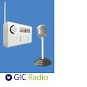 Radio Afghanistan icon