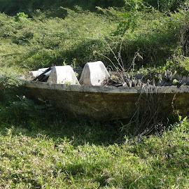 Abandoned Boat by Sherri Hillman - Transportation Boats ( costa rica, lake arenal, lake, boat )
