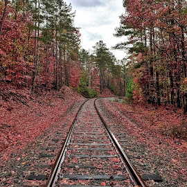 Red Tracks by Lou Plummer - Instagram & Mobile iPhone ( iphone )