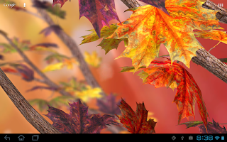 Screenshot of Autumn Tree Free Wallpaper
