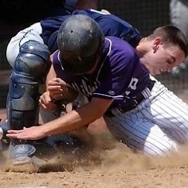 Semifinals State Baseball by Oscar Salinas - Sports & Fitness Basketball (  )