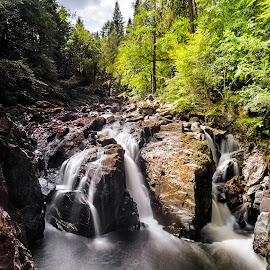 Dunkeld Braanscape by Don Alexander Lumsden - Landscapes Waterscapes