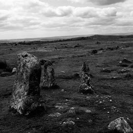 Ancient Stone Row on Dartmoor by Gareth Dickin - Nature Up Close Rock & Stone ( isolated, sky, bleak, stones, atmospheric, rural )