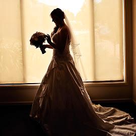 Amberley by Alan Evans - Wedding Bride ( wedding photography, melbourne wedding photographer, silhouette, wedding flowers, aj photography, wedding dress, marriage, bride silhouette, wedding, wedding day, wedding veil, geelong wedding photographer, bride )
