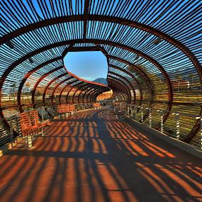 Leading Lines by Eric Demattos - Buildings & Architecture Bridges & Suspended Structures ( bamboo, dos lagos, bridge, shadows )
