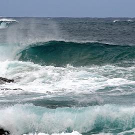 Hawaian Lefty by Bill Waterman - Landscapes Waterscapes ( sky, surfing, waterscape, waves, pacific ocean, ocean, rocks, ocean view,  )