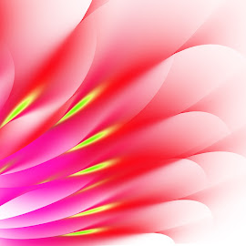 Flower by Iva Aviana - Illustration Abstract & Patterns ( digital art, white background, pink, flower, shapes )