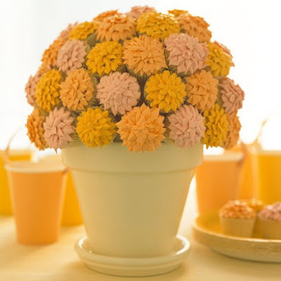 Potted Mums